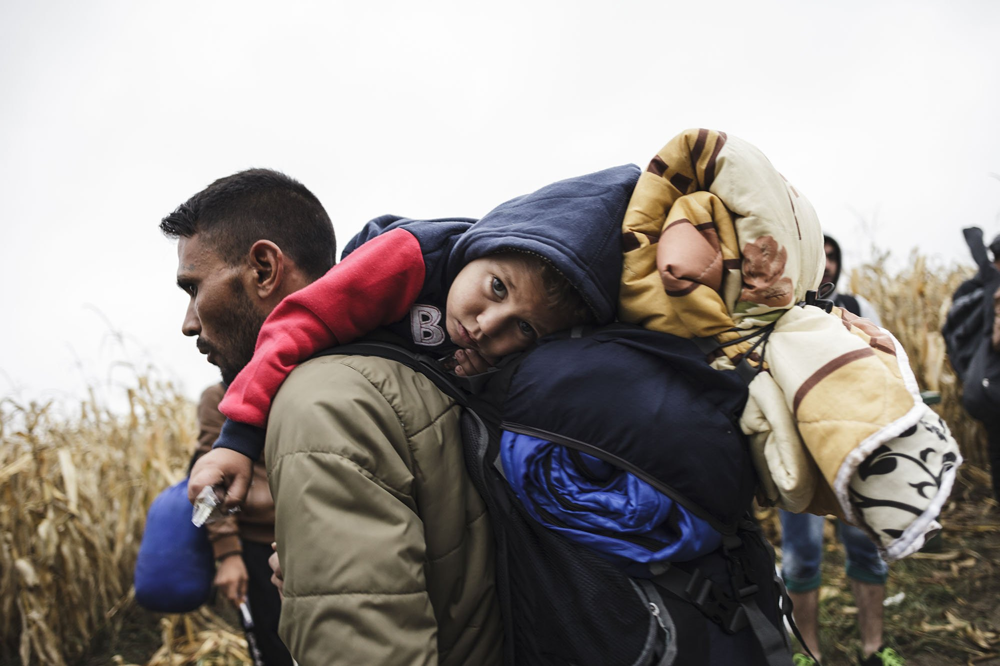 A refugee from Iraq carries his young son as he walks towards Croatia at the Bapska border in Serbia. Photo: Achilleas Zavallis