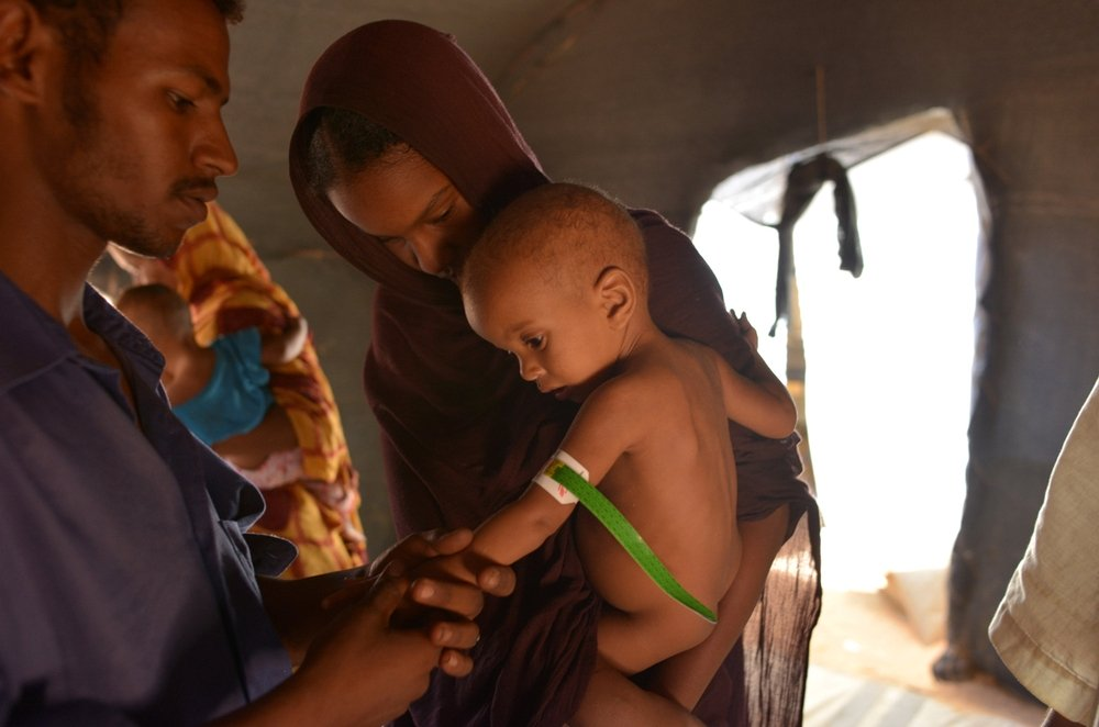 World leaders at the G8 and G20 summits urged to address improving mother and child health in the developing world.
