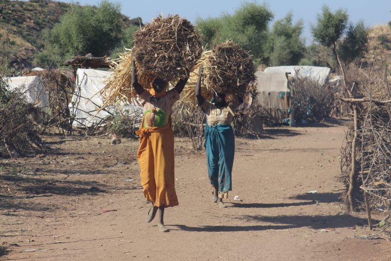 Women who leave the camp to gather wood and grass are sometimes the targets of sexual violence